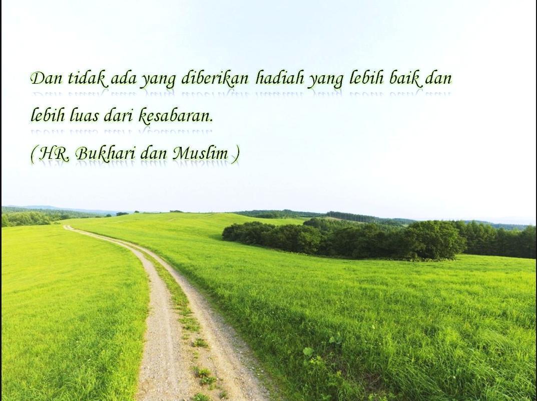 Islam Aisyah Iadhas Life Page 2